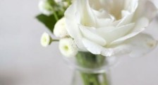 写四个春天的词语 关于春天的好词