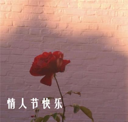 桃花的诗句千古名句